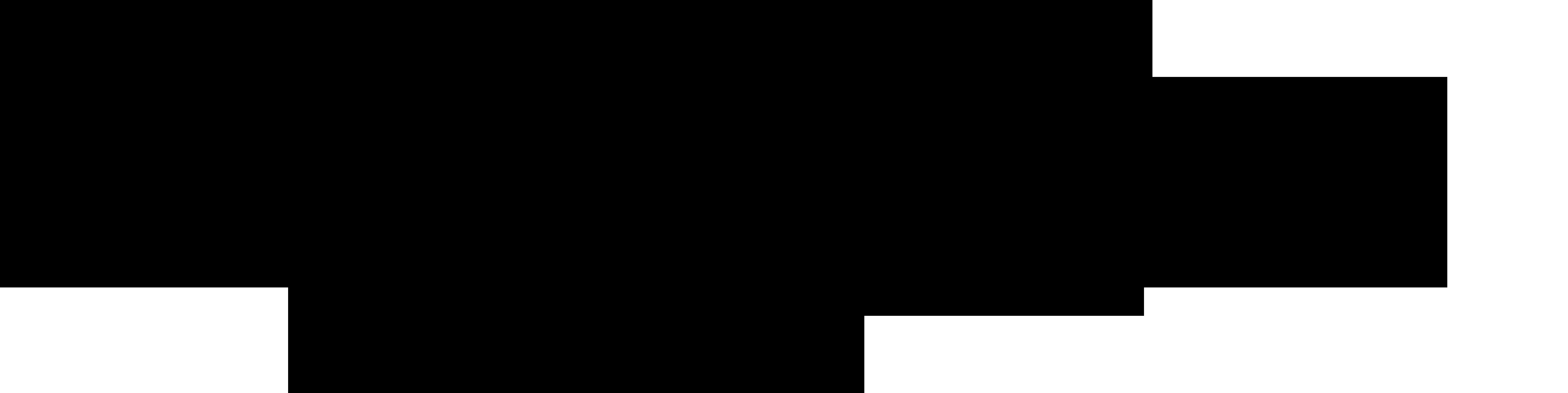 Empiriafoto Logo